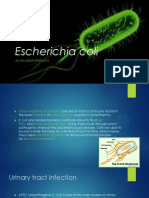Bbdm 5-5 Escherichia Coli