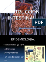 Obstruccion Intestinal Cirugia