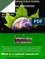 naturalresources-1
