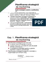 Planul Strategic de Marketing - Sinteza