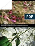 Internacional Garden Photographer of the Year2014-Winningpictures-Part-1