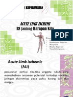 Acute Limb Ischemi