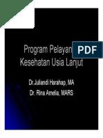 Slide Program Pelayanan Kesehatan Usia Lanjut