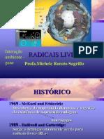 19.05.12 Radicais Livres Aula[1]