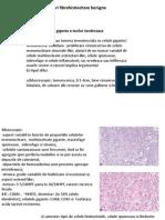 tumori fibrohistiocitare benigne