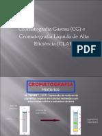Cromatografia gasosa e cromatografia líquida de alta eficiência