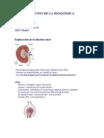Interpretación de La Bioquímica Sanguinea