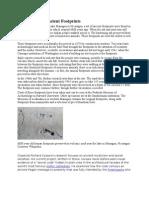 Acahualinca's Ancient Footprints