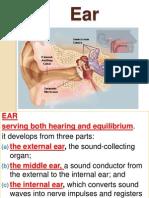 23rd Ear