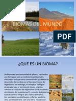 biomas-131102204759-phpapp01