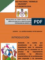 proyecto de investigación preventiva.pptx