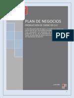Plan de Negocios CUY