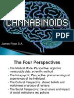cannabinoid powerpoint