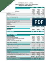 BALANCE GENERAL Y PYG PARA DESARROLLAR ACTIVIDADES.xls