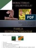 ENTEROBACTERIAS.pptx