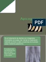A Pico Genesis