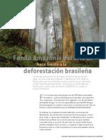 09-12 deforestFondoAmazonia