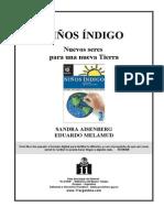 Aisenberg, Sandra & Melamudai, Eduardo - Niños Indigo Nuevos Seres