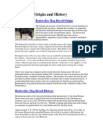 Rottweiler Origin and History