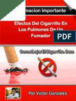 Efectos Del Cigarrillo en Los Pulmones de Un Fumador