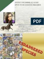 Presentation-elp Endangered Species