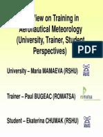 PDF Conf p57 s3 02 Bugeac V
