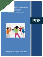 handleiding - pedagogisch groepsplan - het timpaan definitief