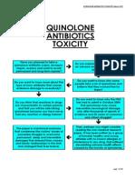 Flox Report 2007 Antibiotics Toxitiy