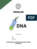 Makalah DNA, RNA, dan Sintesis Protein