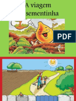 aviagemdasementinha-100322144518-phpapp01-100513045145-phpapp01