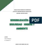 Sensibilización a La Seguridad Higiene y Ambiente