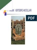 I__TRAUMI__VERTEBRO-MIDOLLARI