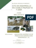Proy Bov Eng Bellavista Agroprocca