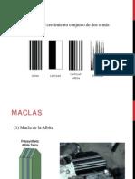 Clase 2 Maclas y Feldespatos
