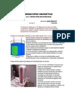 2° Farmacopea Hannemaniana desarrollada por Juver (1)