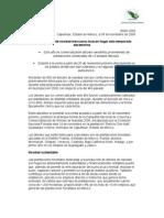 arbol navidad-1.pdf