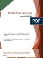Terapia Breve Estrategica EXPO