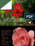 Flores - Amistad 2006