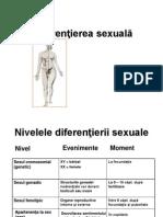 Diferenţierea sexuală