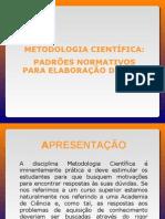Metodologia Padroes Normativos TCC