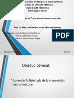 Transmicion Neuromuscular 1