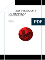 27 Katas Del Karate