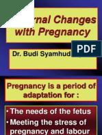 pregnancychanges.ppt