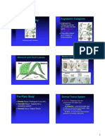 PlantAnatomy7(ORGAN)