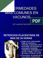 Enfermedades Mas Comunes en Vacunos
