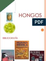 14Hongos211