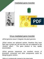 Plant Virus Vectors