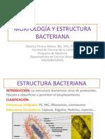 2. MORFOLOGÍA Y ESTRUCTURA BACTERIANA II estudiantes.pdf