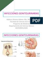 Infecciones genito-urinarias estudiantes.pdf