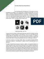 INFECCIONES VIRALES DEL SISTEMA DIGESTIVO.pdf